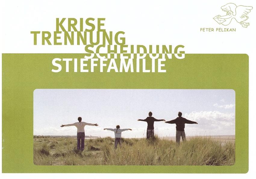 Krisen, Trennung, Scheidung, Stieffamilie (40 S.)